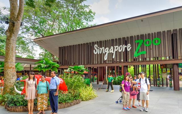 Experience Singapore zoo through immersive night walks | TTG Asia