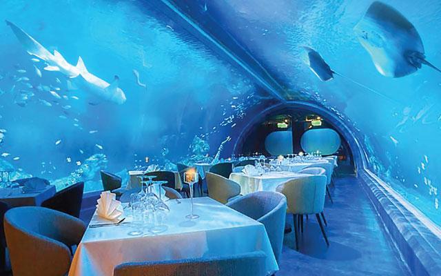 Giant aquarium and underwater restaurant open at Central ...