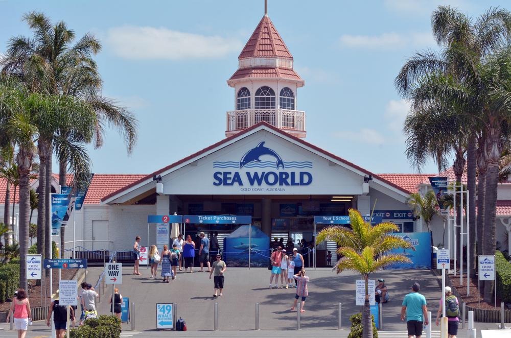 sea-world-gold-coast